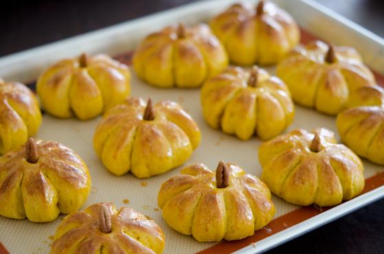 pumpkin-dinner-rolls-19
